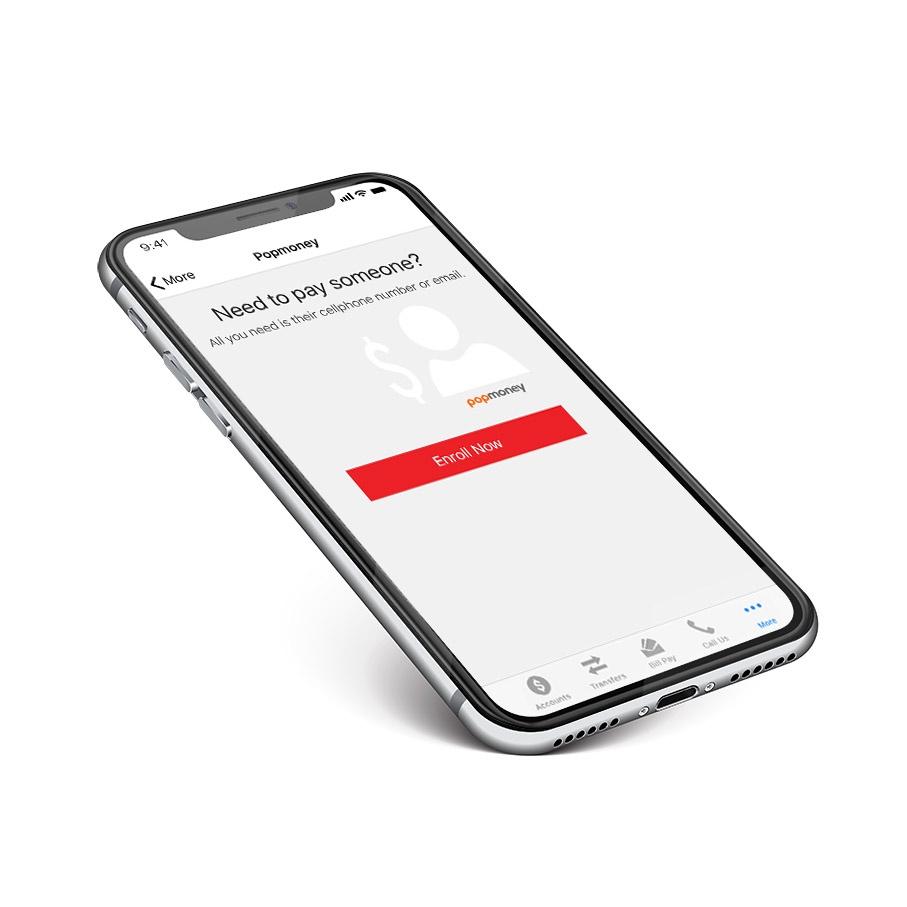 mobile device displaying popmoney screen